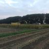 Maïsdoolhof 2018 gesloten: de maïs is geoogst!