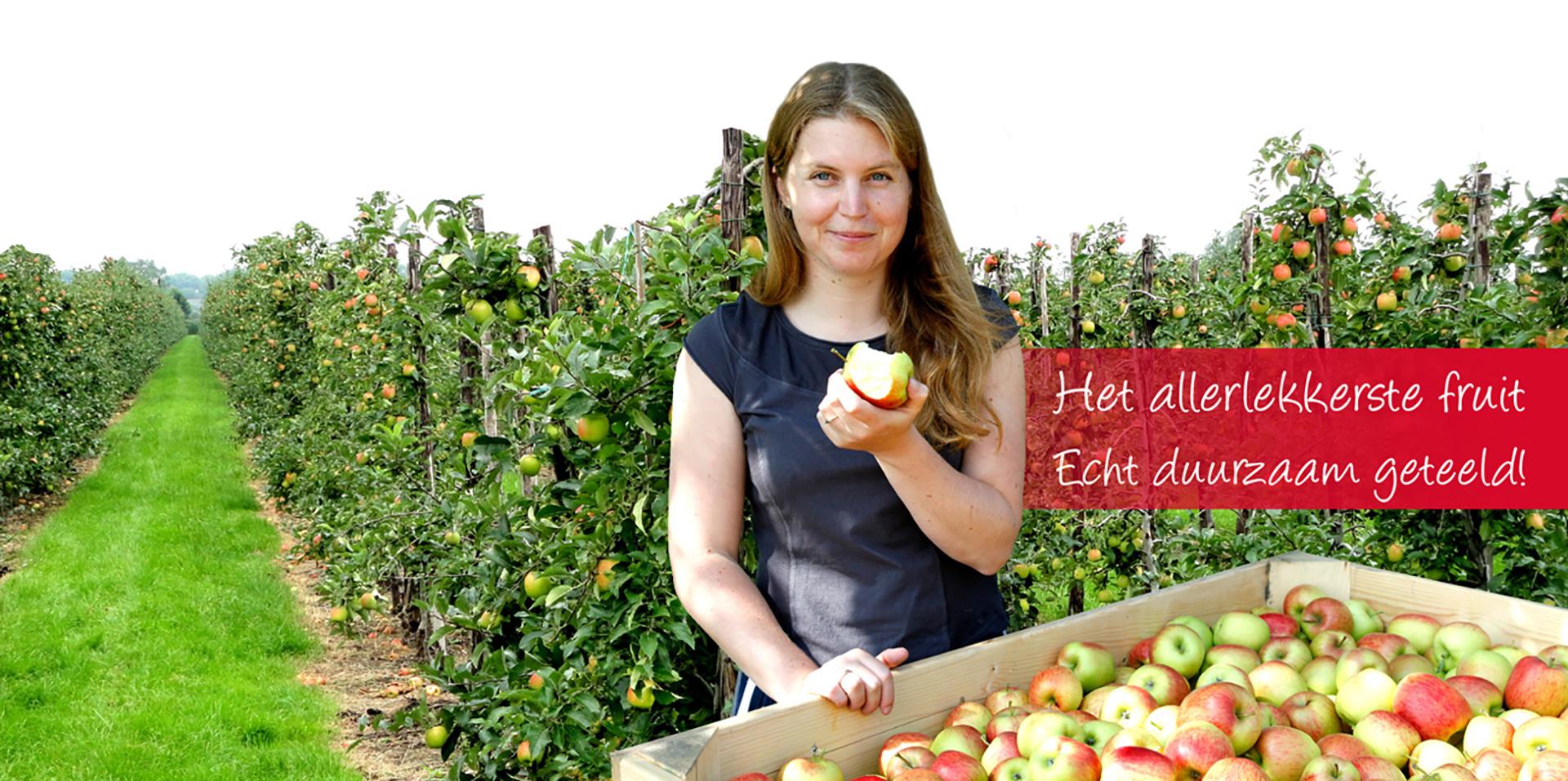 hartfruit-header-1920x957