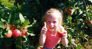 appelplukdag-meisje-header